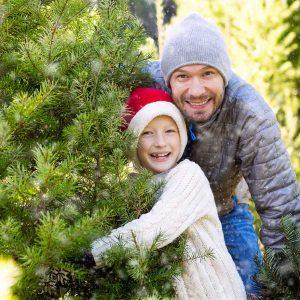 Otisville Michigan Christmas Tree Farm, Thumb Area Live Christmas Trees