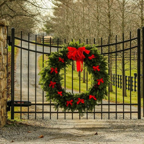 Fresh Live Greens Holiday/Christmas Wreaths